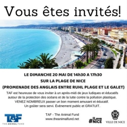 The Animal Fund  - Opération Plastique - le 20 mai 2018 - Ruhl Plage Nice